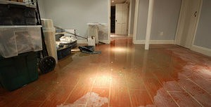Water Damage Causing Basement To be Susceptible To Mold