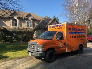 Water Damage and Mold Removal Aurora