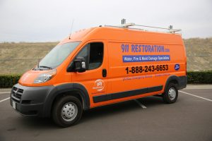 Water Damage and Mold Removal Brewerton