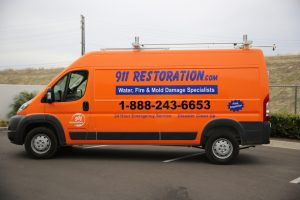 Water Damage and Mold Removal Hastings